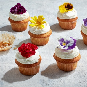 lemon-elderflower-cupcakes-800x800